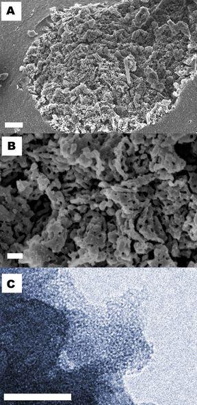 Zdjęcia z mikrospu SEM: a) ziarno w skali 1 mikrometra, b) powiększenie porowatego regionu materiału, skala 200nm. c) zdjęcie z mikroskopu TEM pokazuje porowatość materiału w skali 50nm.