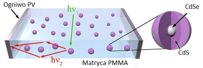 Kropki kwantowe absorbują promieniowanie i transportują je przez matrycę z tworzywa sztucznego PMMA do ogniw PV na krawędziach.